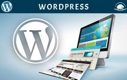 Kurs informatike: WordPress - Pravljenje web stranica, kreiranje internet stranice, web dizajn, web razvoj - IT Kursevi - Online edukacija - OAK Online Akademija